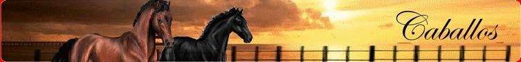 Caballos : Nouveau site d'elevage virtuel de chevaux Caballos1